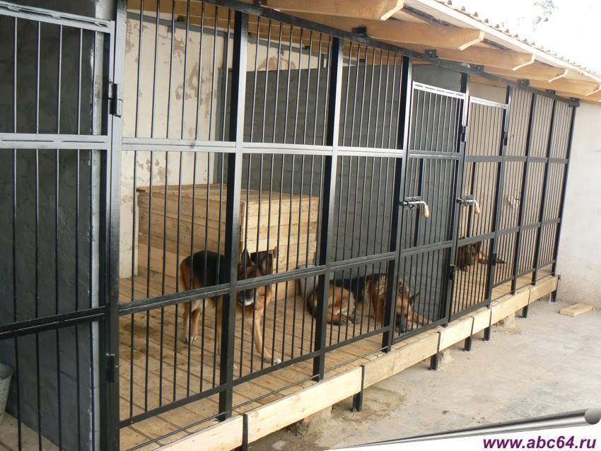 Зоогостиницы для собак тюмень
