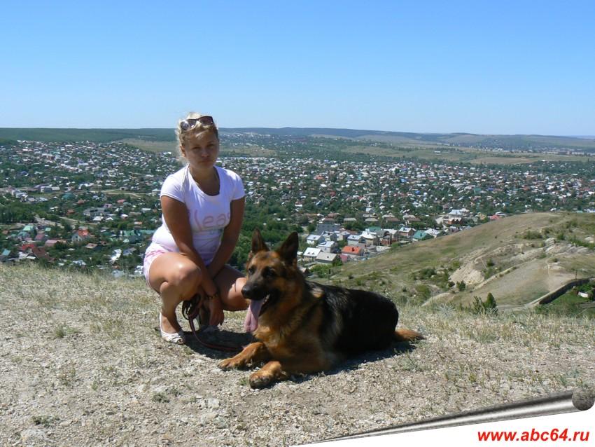 Дрессировка собак всех пород в Саратове в питомнике Нибиру Ланд, ОКД, ЗКС, особые условия дрессировки